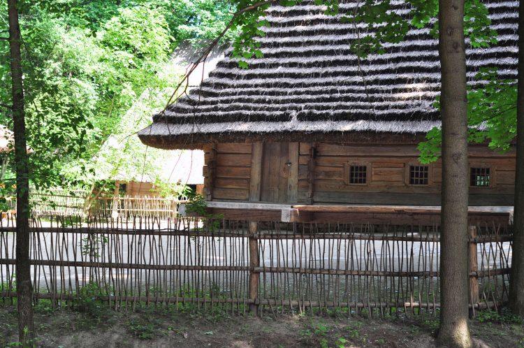 фото Шевченківського Гаю